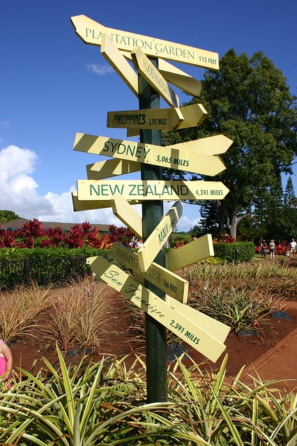 Signpost with many directions
