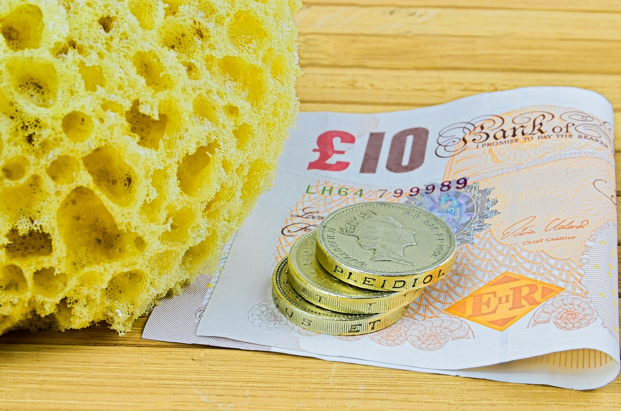 Pounds sterling and a sponge